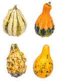 Four Gourds on White Stock Images