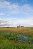 Four grain bins in a field Royalty Free Stock Photos