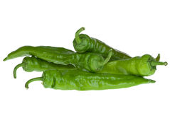 Four green chili peppers Royalty Free Stock Photo