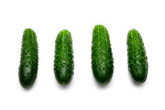 Four green cucumbers with pimples isolated Stock Image