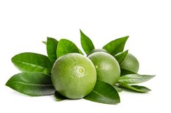 Four green limes with leaves Stock Photo