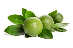 Four green limes with leaves Stock Images