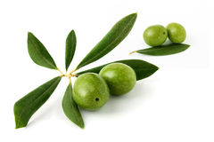Four green olives and olive leaves Royalty Free Stock Image