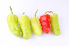 Four green peppers and a red one Stock Photos