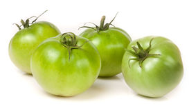 Four green unripe tomato isolated on white background Royalty Free Stock Photography