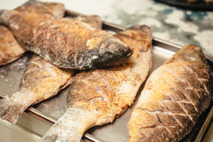 four grilled fish royalty free stock photo