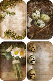 Four grunge nature postcards. Stock Photo
