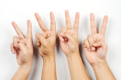 A four hand with peace symbols. Isolated with white background Royalty Free Stock Photo