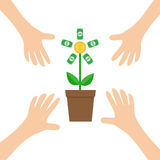 Four Hands arm reaching to Growing money tree shining coin with dollar sign Plant in the pot. Financial growth concept. Successful Stock Photography
