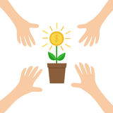 Four Hands arms reaching to Growing money tree big shining coin with dollar sign Plant in the pot. Financial growth concept.  Royalty Free Stock Photos