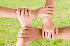 Four hands joined together. With a grass background Royalty Free Stock Photography