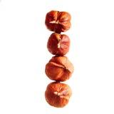 Four of hazelnut. On white background Royalty Free Stock Photo