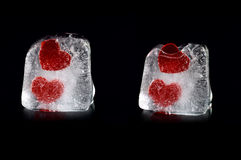 Four hearts in melting icecubes #1. Four hearts in melting ice cubes with small reflection on black background Royalty Free Stock Photo