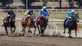 Four Horse Race Stock Photos