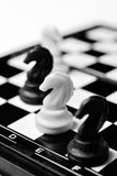 Four horses on chessboard isolated Stock Image