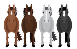 Four Horses. Illustration of four horses with white background Stock Photos