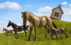 Four horses pasturing in the country Royalty Free Stock Image