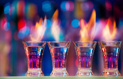 Four hot shot glasses on a bar counter Stock Photography