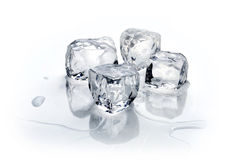 Four ice cubes Royalty Free Stock Photography