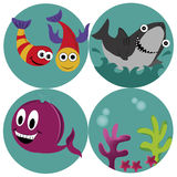 Four icons of the sea Royalty Free Stock Photography