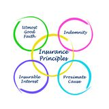 Four Insurance Principles royalty free stock images