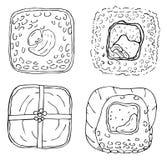 Four Japanese Sushi Rolls royalty free illustration