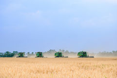 Four John Deere Combine Harvesters Harvesting Wheat in the Field. Royalty Free Stock Images