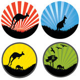 Four kangaroo in a circle Stock Image