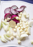 Four kind of onion. Four kinds of onion cleaned and chopped Royalty Free Stock Photo