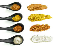 Four kind of spices in the ceramic spoon. Main spices for cook Asian food Stock Image