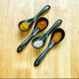Four kind of spices in the ceramic spoon. Those spices are main ingredient of Asian food Royalty Free Stock Photos
