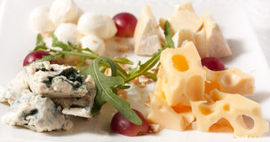 Four kinds of cheese on a plate. Four kinds of cheese on a square white plate Royalty Free Stock Photography