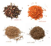 Four kinds of dried spices. A mixture of peppers, dried carrots, coriander, cumin seeds. White isolated background. royalty free stock photography
