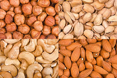 Four kinds of nuts in bulk Royalty Free Stock Images