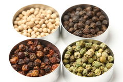Four kinds of pepper Royalty Free Stock Image