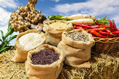 Four kinds of rice in small burlap bags. And organic vegetable on straw Royalty Free Stock Image