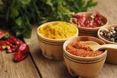 Four kinds of seasonings. Seasonings and some jalapenos on the wooden table Stock Photos