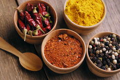 Four kinds of seasonings. Seasonings and some jalapenos on the wooden table Stock Image