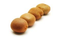 Four kiwi fruits Stock Image