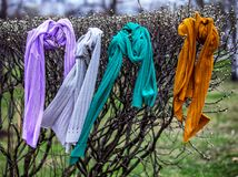 Four knitted multy-colored scarfs hang on a bush. Four knitted multy-colored scarfs hang on a bush in a park. Handmade.Knitted scarves for spring. The concept Royalty Free Stock Images