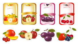 Four labels with berries and fruits. Stock Photos