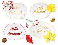 Four labels with lettering and autumn leaves Royalty Free Stock Photos