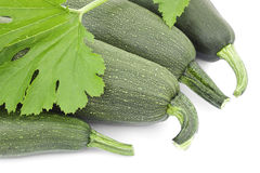 Four large courgettes Stock Photos