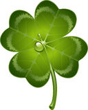 Four-leaf clover. Over white. EPS 10 Royalty Free Stock Photography
