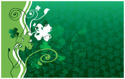 Four Leaf Clover. Background, St. Patrick's day Royalty Free Stock Photos