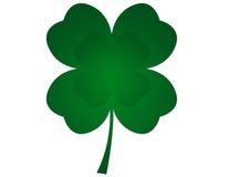 Four Leaf Clover. Green shamrock illustration isolated on white Stock Photos