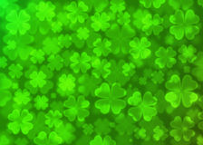 Four leaf clover bokeh effect. On green background,Clover wallpaper Royalty Free Stock Images