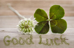 Four-leaf clover with flower and text good Luck Royalty Free Stock Photography