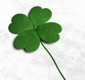 Four-leaf clover on the ground Royalty Free Stock Photos