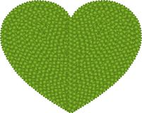 A Four Leaf Clover of Heart Shape Stock Photos